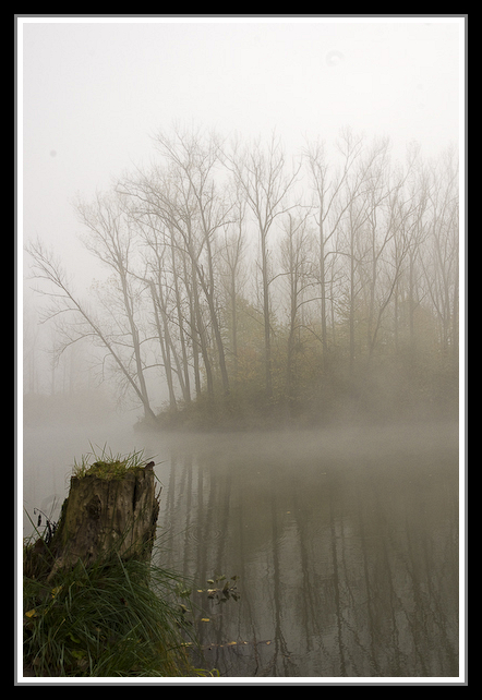 matin brumeu _DSC0660